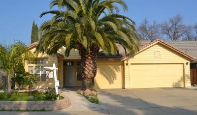 Elk Grove Single Family Home For Sale: 9508 Snowy Springs Circle