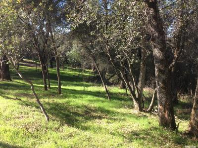 Placerville Residential Lots & Land For Sale: Petri Lane