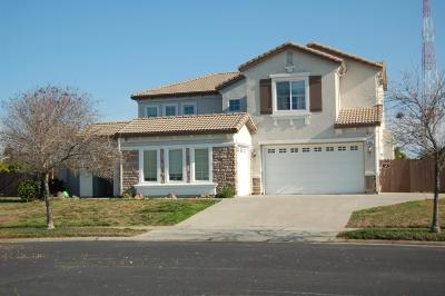 Roseville Single Family Home For Sale: 8582 Bridgestone Crescent Road