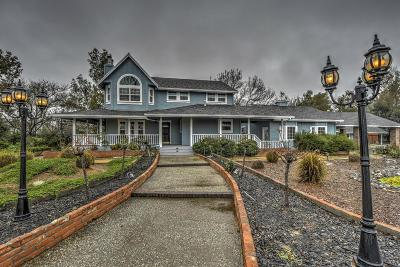 Colusa Single Family Home For Sale: 3277 Ranch Road