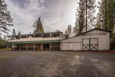 Placerville Commercial For Sale: 2180 Pleasant Valley Road