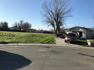 Sacramento Single Family Home For Sale: 9 Granville Court