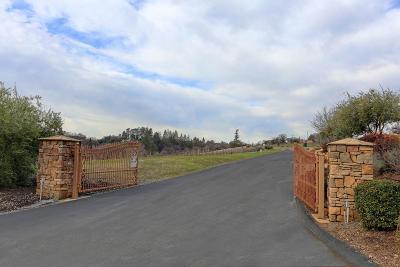 Auburn Residential Lots & Land For Sale: 2280 Vineyard Estates