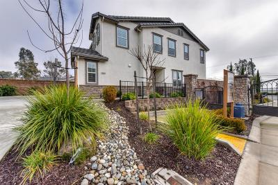 Sacramento Single Family Home For Sale: 9785 Tribeca Drive