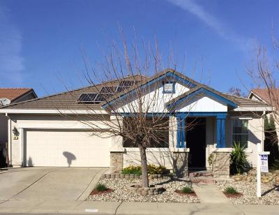Sacramento Single Family Home For Sale: 20 Opus Circle