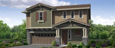 Rocklin Single Family Home For Sale: 1330 Orchid Court