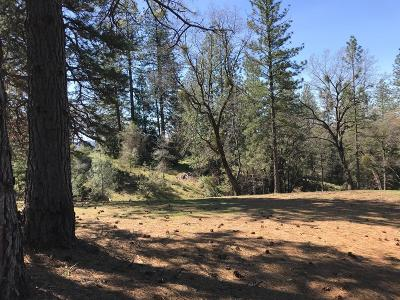 Placerville Residential Lots & Land For Sale: 3641 Kincade Drive