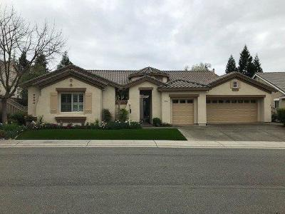 Placer County Single Family Home For Sale: 1087 Paragon Lane