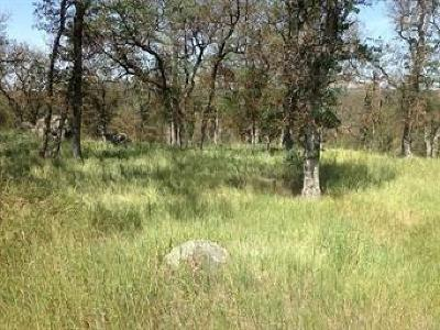 Residential Lots & Land For Sale: Thunder Road