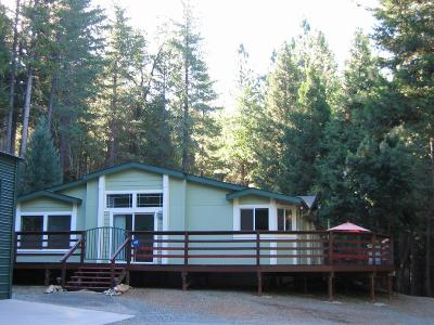 El Dorado County Single Family Home For Sale: 9635 Wentworth Springs Road