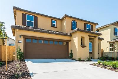 Tracy CA Single Family Home For Sale: $749,900