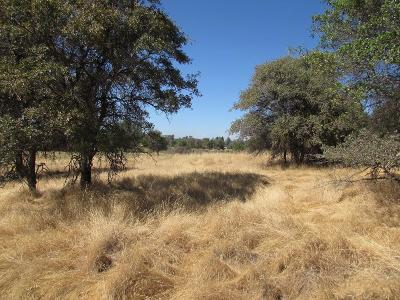 Residential Lots & Land For Sale: 3800 Foothill Oaks