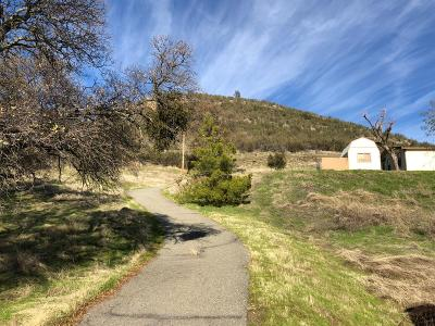 Valley Springs Single Family Home For Sale: 4028 Burson Road
