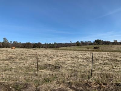 Auburn Residential Lots & Land For Sale: Bell Road