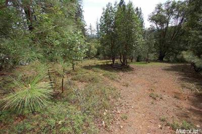 Pioneer Residential Lots & Land For Sale: 17505 Canyon View Court