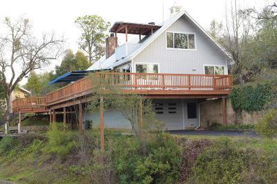 El Dorado County Single Family Home For Sale: 3971 Friedman Lane