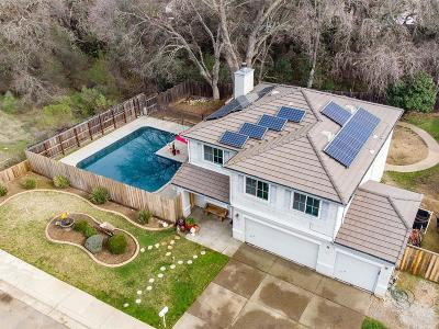 Rescue Single Family Home For Sale: 3025 Alexandrite Drive