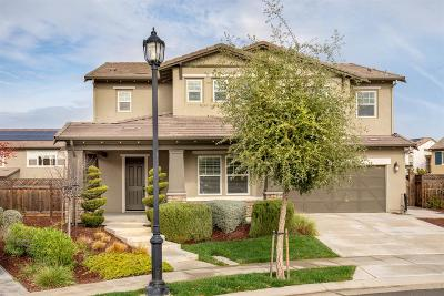 Single Family Home For Sale: 549 North Miraloma Court