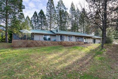 Placerville Single Family Home For Sale: 7243 Maidu Drive