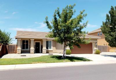 Manteca Single Family Home For Sale: 333 Catmint Street