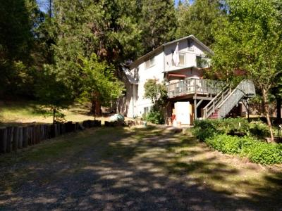 Bangor, Berry Creek, Chico, Clipper Mills, Gridley, Oroville Single Family Home For Sale: 1662 Bald Rock Rd
