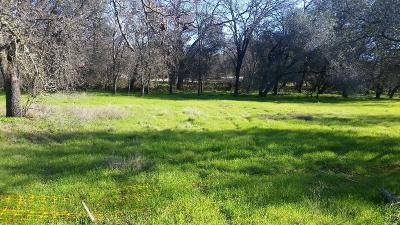 Rocklin Residential Lots & Land For Sale: 4765 Racetrack Road
