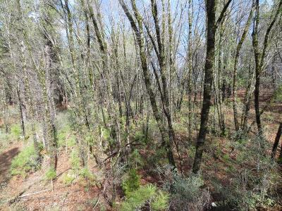 Grass Valley Residential Lots & Land For Sale: 12495 Hidden Valley