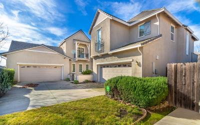 Elk Grove Single Family Home For Sale: 9630 Hahn Way