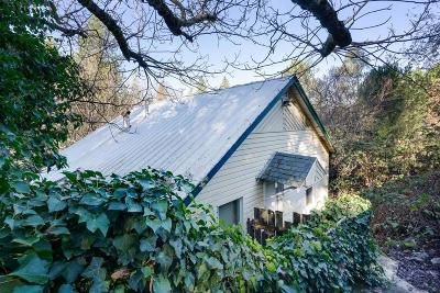 Placerville Single Family Home For Sale: 3128 Washington Street