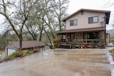Grass Valley Single Family Home For Sale: 17037 Dog Bar Road