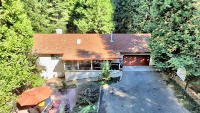 Pollock Pines Single Family Home For Sale: 2925 Kimberly Lane