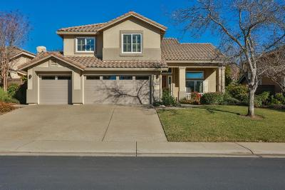 El Dorado Hills Single Family Home For Sale: 3735 Aliso Drive