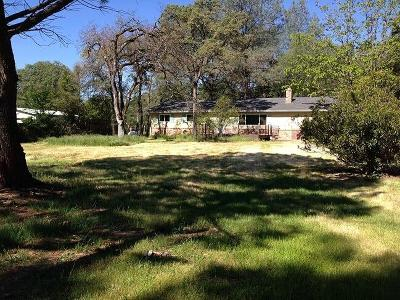 Placer County Single Family Home For Sale: 3035 Vista Way