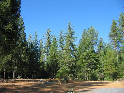 Georgetown CA Residential Lots & Land For Sale: $225,000