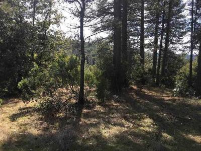 Pine Grove Residential Lots & Land For Sale: Petersen Ranch Drive