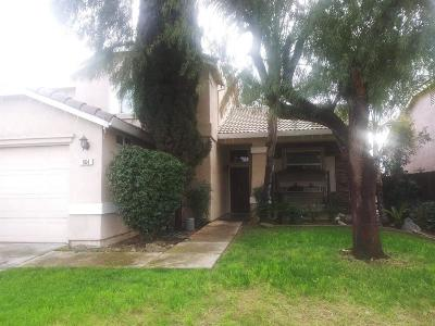 Ceres Single Family Home For Sale: 864 Stone Springs Drive