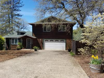 Placerville Single Family Home For Sale: 2824 Canal Court