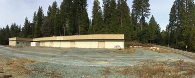 Pioneer Commercial For Sale: 26390 Buckhorn Ridge Road