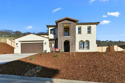 El Dorado Hills Single Family Home For Sale: 4083 Aristotle Drive