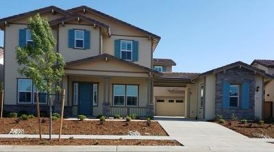Elk Grove Single Family Home For Sale: 8480 Ponta Delgada Drive