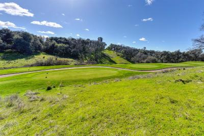 El Dorado Hills Residential Lots & Land For Sale: 5139 Da Vinci