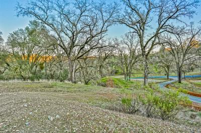 Shingle Springs Residential Lots & Land For Sale: 4165 Black Oak Drive