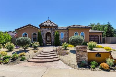 Folsom Single Family Home For Sale: 657 Avalanche Peak Way