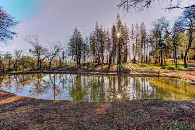 Grass Valley Residential Lots & Land For Sale: 18787 Hiers Road