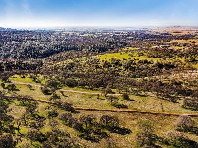 Lincoln Residential Lots & Land For Sale: 3550 Bear River Road