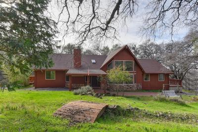 Placerville Single Family Home For Sale: 2940 Mortara Circle