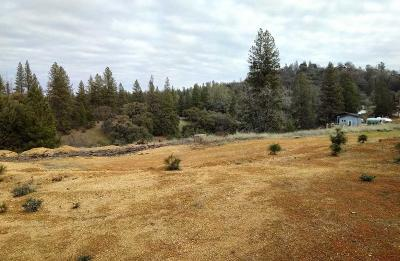 Colfax Residential Lots & Land For Sale: 1062 Moffett Ranch Road