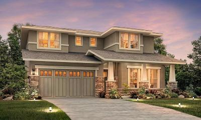 Modesto Single Family Home For Sale: 817 Rosmarino Way