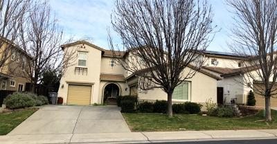 Rocklin Single Family Home For Sale: 868 Spotted Pony Lane