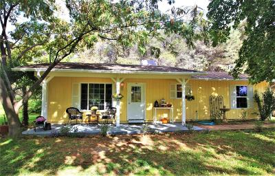 Penn Valley Single Family Home For Sale: 11882 Spenceville Road